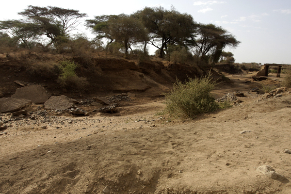 Isiolo river some 30 kilometers from town.  Until recently, this area was the main water source for nearby villages and wildlife.